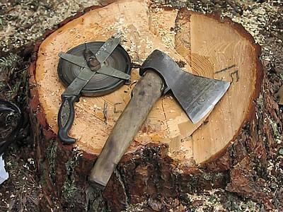 kill_tree
